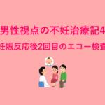 男性視点の不妊治療記4 - 妊娠反応後2回目のエコー検査